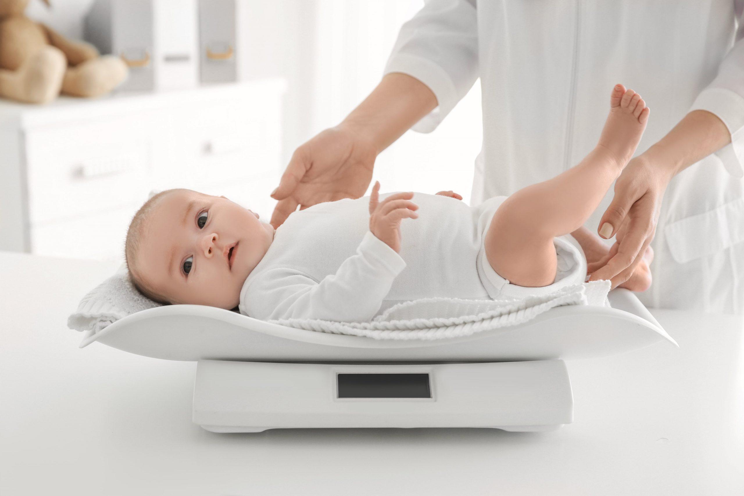 Půjčování kojeneckých vah